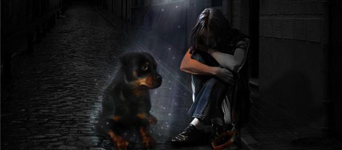 картинки об утрате собаки лаптей